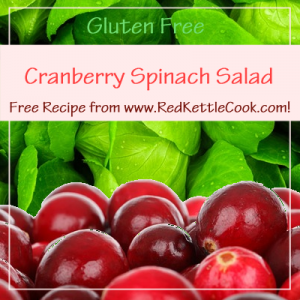 Cranberry Spinach Salad Free Recipe from www.RedKettleCook.com!