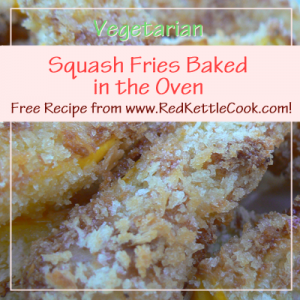 Squash Fries Baked in the Oven Free Recipe from RedKettleCook.com!