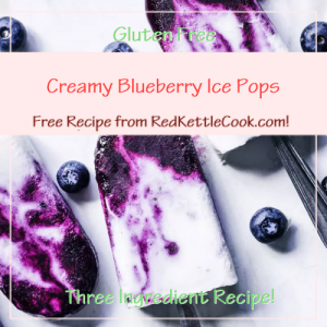 Creamy Blueberry Ice Pops Soup Free Recipe from RedKettleCook.com!